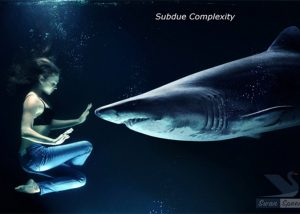 subdue-complexity